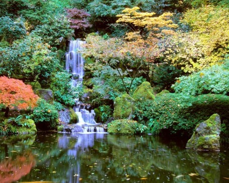 AA_Parks_JapaneseGarden_14_courtesy_JapaneseGarden_DavidMCobb1-652x521