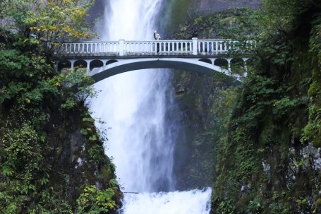 Multnomah-Falls-Portland-Oregon-Salty-Canary-copy